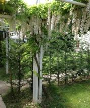 gardens-outside-padova-hotel
