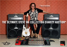 ultimate-vai-auction